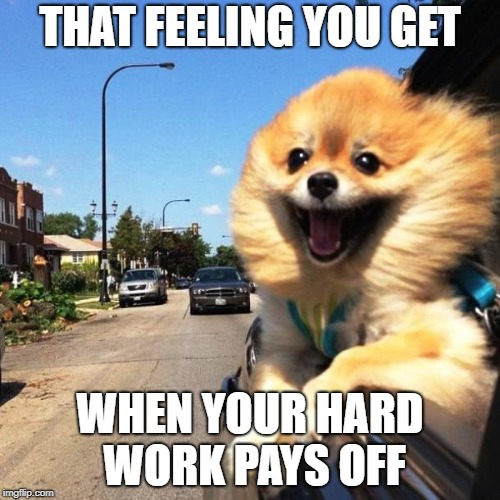 THAT FEELING YOU GET WHEN YOUR HARD WORK PAYS OFF | image tagged in happy dog | made w/ Imgflip meme maker