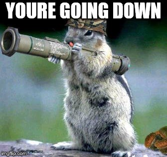 Bazooka Squirrel Meme | YOURE GOING DOWN | image tagged in memes,bazooka squirrel | made w/ Imgflip meme maker