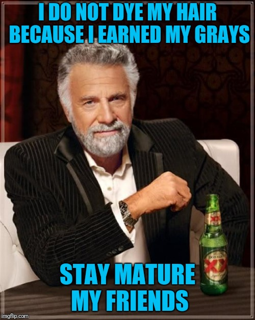 The Most Interesting Man In The World Meme | I DO NOT DYE MY HAIR BECAUSE I EARNED MY GRAYS STAY MATURE MY FRIENDS | image tagged in memes,the most interesting man in the world | made w/ Imgflip meme maker