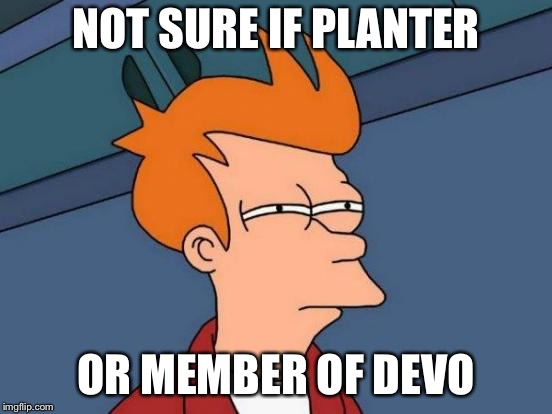 Futurama Fry Meme | NOT SURE IF PLANTER OR MEMBER OF DEVO | image tagged in memes,futurama fry | made w/ Imgflip meme maker