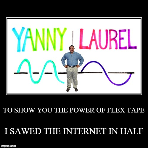 Flex Tape Yanny/Laurel | TO SHOW YOU THE POWER OF FLEX TAPE | I SAWED THE INTERNET IN HALF | image tagged in funny,demotivationals | made w/ Imgflip demotivational maker
