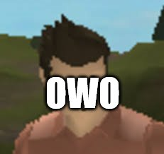 when they be talking about anthro |  OWO | image tagged in roblox anthro,memes,roblox,owo,anthro | made w/ Imgflip meme maker