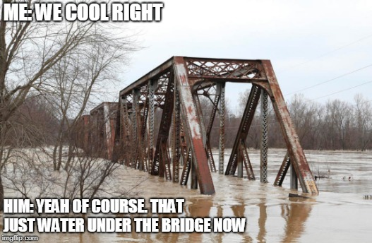 Just Water Under The Bridge | ME: WE COOL RIGHT HIM: YEAH OF COURSE. THAT JUST WATER UNDER THE BRIDGE NOW | image tagged in water,underwater,bridge,goofy | made w/ Imgflip meme maker
