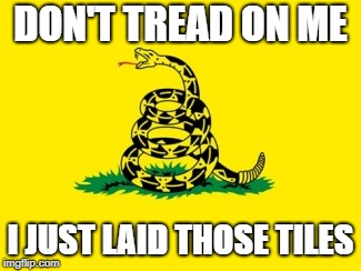 Gadsden Flag | DON'T TREAD ON ME I JUST LAID THOSE TILES | image tagged in gadsden flag | made w/ Imgflip meme maker