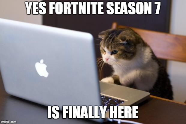 Cat using computer | YES FORTNITE SEASON 7 IS FINALLY HERE | image tagged in cat using computer | made w/ Imgflip meme maker
