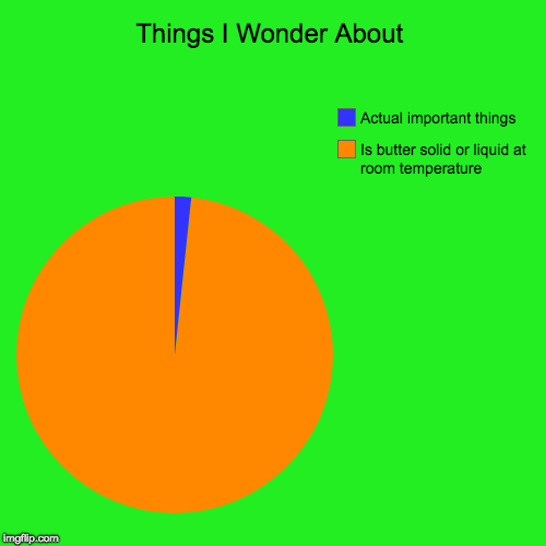 Things I Wonder About | Is butter solid or liquid at room temperature, Actual important things | image tagged in funny,pie charts | made w/ Imgflip chart maker