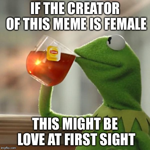 But Thats None Of My Business Meme | IF THE CREATOR OF THIS MEME IS FEMALE THIS MIGHT BE LOVE AT FIRST SIGHT | image tagged in memes,but thats none of my business,kermit the frog | made w/ Imgflip meme maker