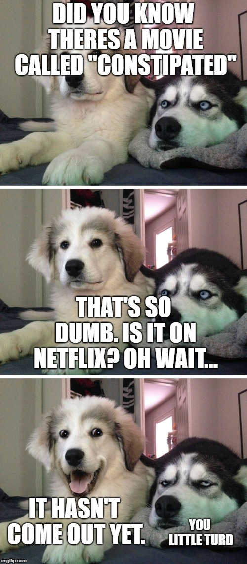 "Bad pun dogs | DID YOU KNOW THERES A MOVIE CALLED ""CONSTIPATED"" THAT'S SO DUMB. IS IT ON NETFLIX? OH WAIT... IT HASN'T COME OUT YET. YOU LITTLE TURD 