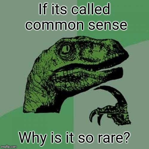 Philosoraptor Meme | If its called common sense Why is it so rare? | image tagged in memes,philosoraptor | made w/ Imgflip meme maker