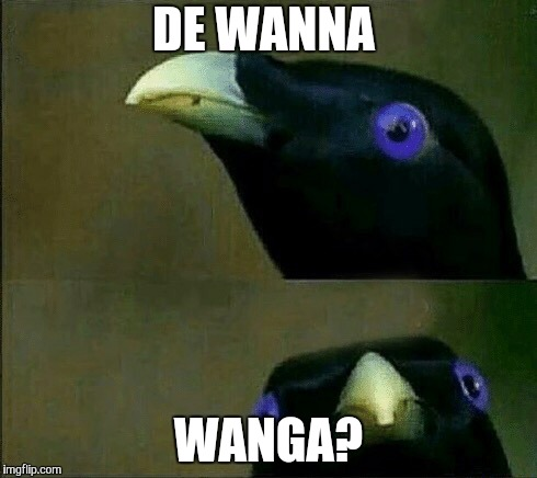 DE WANNA WANGA? | image tagged in you want sum fuk | made w/ Imgflip meme maker