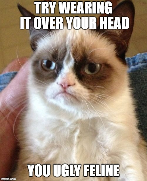 Grumpy Cat Meme | TRY WEARING IT OVER YOUR HEAD YOU UGLY FELINE | image tagged in memes,grumpy cat | made w/ Imgflip meme maker