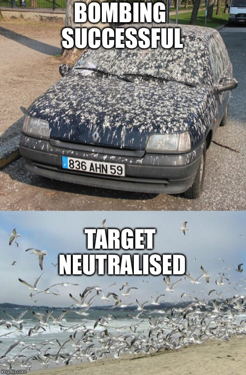 BOMBING SUCCESSFUL TARGET NEUTRALISED | image tagged in funny memes,car | made w/ Imgflip meme maker