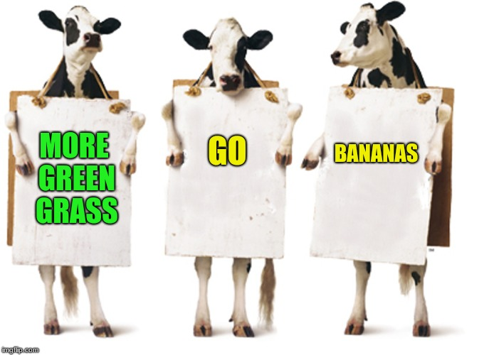 the cows join the revolution |  GO; BANANAS; MORE GREEN GRASS | image tagged in revolution | made w/ Imgflip meme maker