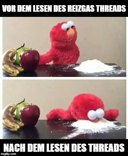 elmo |  VOR DEM LESEN DES REIZGAS THREADS; NACH DEM LESEN DES THREADS | image tagged in elmo | made w/ Imgflip meme maker