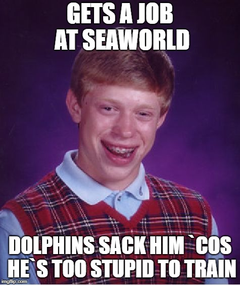 Bad Luck Brian Meme | GETS A JOB AT SEAWORLD DOLPHINS SACK HIM `COS HE`S TOO STUPID TO TRAIN | image tagged in memes,bad luck brian | made w/ Imgflip meme maker