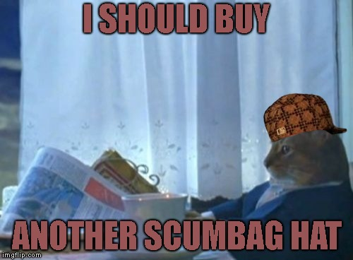 I Should Buy Another Scumbag Hat | I SHOULD BUY ANOTHER SCUMBAG HAT | image tagged in memes,i should buy a boat cat,scumbag | made w/ Imgflip meme maker
