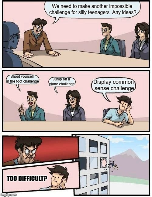 Boardroom Meeting Suggestion Meme | We need to make another impossible challenge for silly teenagers. Any ideas? Shoot yourself in the foot challenge Jump off a plane challenge | image tagged in memes,boardroom meeting suggestion | made w/ Imgflip meme maker