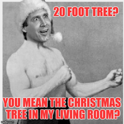 Christmas Vacation Week. Dec 2nd - Dec 8th (A Thparky event) | 20 FOOT TREE? YOU MEAN THE CHRISTMAS TREE IN MY LIVING ROOM? | image tagged in memes,funny,overly manly man,christmas vacation week,thparky | made w/ Imgflip meme maker