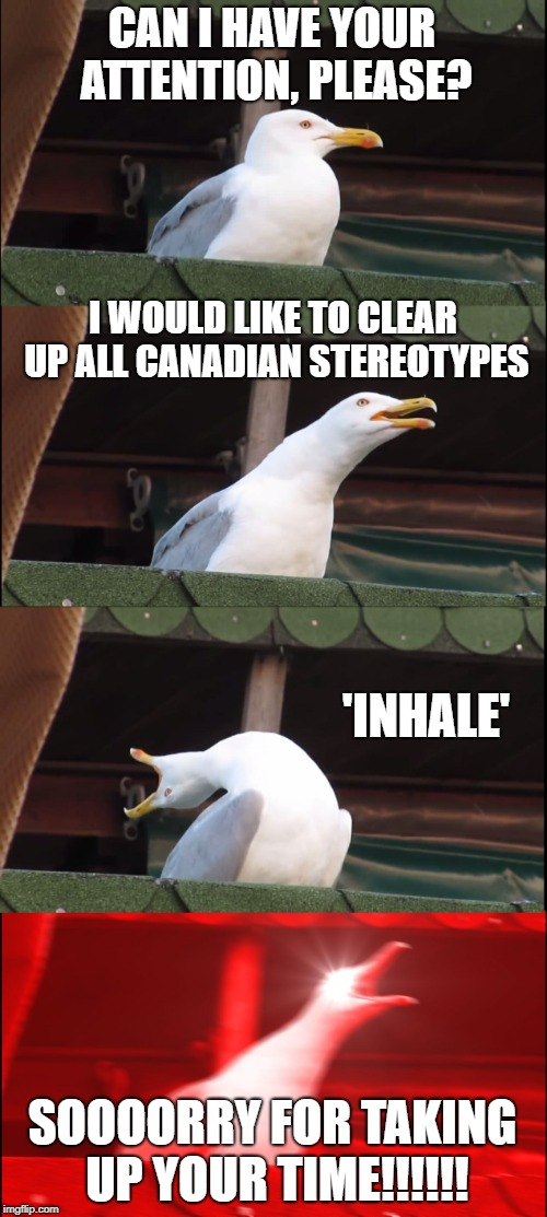 On a more serious note... we, Canadians aren't actually nice, we are just passive aggressive as hell. | CAN I HAVE YOUR ATTENTION, PLEASE? I WOULD LIKE TO CLEAR UP ALL CANADIAN STEREOTYPES 'INHALE' SOOOORRY FOR TAKING UP YOUR TIME!!!!!! | image tagged in memes,inhaling seagull,stereotypes,canada,canadian | made w/ Imgflip meme maker