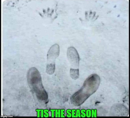 who plays leap frog in the snow? | TIS THE SEASON | image tagged in snow,prints | made w/ Imgflip meme maker