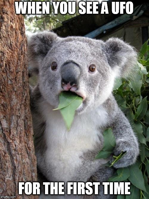 Surprised Koala Meme | WHEN YOU SEE A UFO FOR THE FIRST TIME | image tagged in memes,surprised koala | made w/ Imgflip meme maker