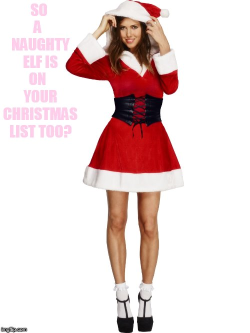 SO A   NAUGHTY ELF IS ON   YOUR CHRISTMAS LIST TOO? | made w/ Imgflip meme maker