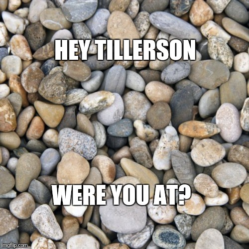 """Tillerson's as dumb as a rock"" 