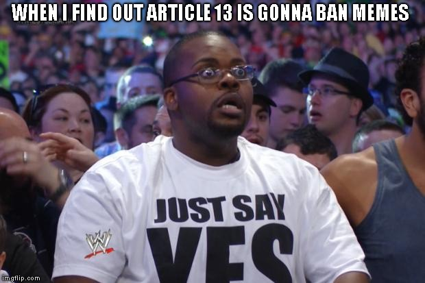 Shocked WWE Fan | WHEN I FIND OUT ARTICLE 13 IS GONNA BAN MEMES | image tagged in shocked wwe fan,article 13 | made w/ Imgflip meme maker