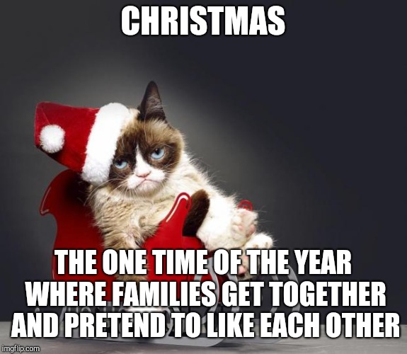 Grumpy Cat Christmas HD | CHRISTMAS THE ONE TIME OF THE YEAR WHERE FAMILIES GET TOGETHER AND PRETEND TO LIKE EACH OTHER | image tagged in grumpy cat christmas hd | made w/ Imgflip meme maker