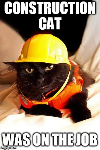 Construction Cat | CONSTRUCTION CAT WAS ON THE JOB | image tagged in construction cat | made w/ Imgflip meme maker
