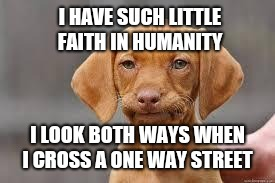 Disappointed Dog | I HAVE SUCH LITTLE FAITH IN HUMANITY I LOOK BOTH WAYS WHEN I CROSS A ONE WAY STREET | image tagged in disappointed dog | made w/ Imgflip meme maker