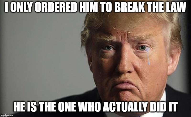 Maga means Impeachment | I ONLY ORDERED HIM TO BREAK THE LAW HE IS THE ONE WHO ACTUALLY DID IT | image tagged in memes,maga,trump,law,impeach,politics | made w/ Imgflip meme maker