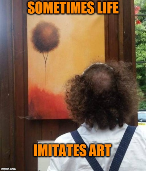 bald spot |  SOMETIMES LIFE; IMITATES ART | image tagged in bald,spot the difference,art,hair | made w/ Imgflip meme maker