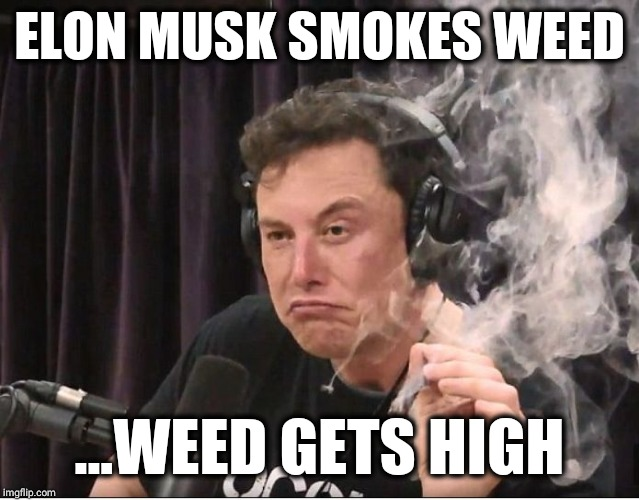 MUSK HAVE LIST | ELON MUSK SMOKES WEED ...WEED GETS HIGH | image tagged in elon musk smoking a joint,elon musk,420,weed,funny,memes | made w/ Imgflip meme maker