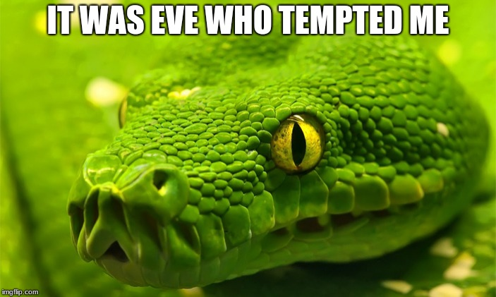 Adam & Eve | IT WAS EVE WHO TEMPTED ME | image tagged in snake | made w/ Imgflip meme maker