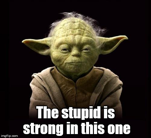 yoda | The stupid is strong in this one | image tagged in yoda | made w/ Imgflip meme maker