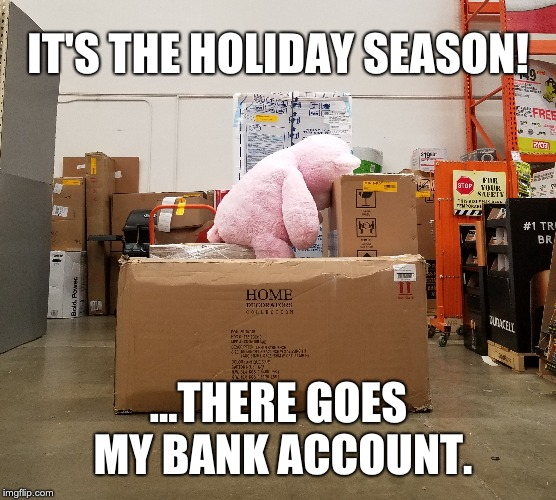 Holiday Bankrupt! | IT'S THE HOLIDAY SEASON! ...THERE GOES MY BANK ACCOUNT. | image tagged in holidays,lol so funny,consumerism,teddy bear,money | made w/ Imgflip meme maker