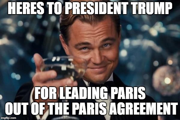Leonardo Dicaprio Cheers | HERES TO PRESIDENT TRUMP FOR LEADING PARIS OUT OF THE PARIS AGREEMENT | image tagged in memes,leonardo dicaprio cheers | made w/ Imgflip meme maker