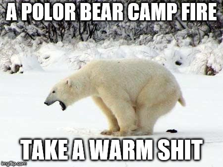 a polor bear camp fire | A POLOR BEAR CAMP FIRE TAKE A WARM SHIT | image tagged in polar bear shits in the snow,funny animals,shit,bear,funny memes,funny meme | made w/ Imgflip meme maker