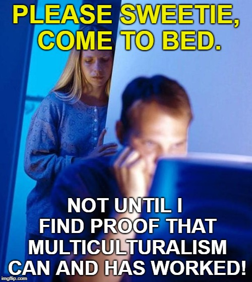 Diversity Is Our Strength LOL |  PLEASE SWEETIE, COME TO BED. NOT UNTIL I FIND PROOF THAT MULTICULTURALISM CAN AND HAS WORKED! | image tagged in computer guy,wife,diversity,research | made w/ Imgflip meme maker