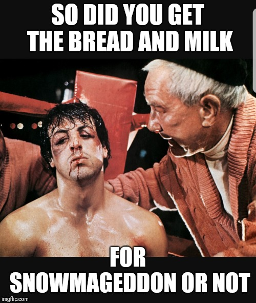 Rocky goes shopping | SO DID YOU GET THE BREAD AND MILK FOR SNOWMAGEDDON OR NOT | image tagged in rocky,rocky balboa,memes,funny memes,snow | made w/ Imgflip meme maker