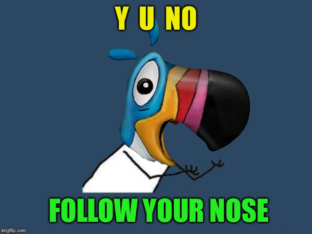 Y  U  NO FOLLOW YOUR NOSE | made w/ Imgflip meme maker