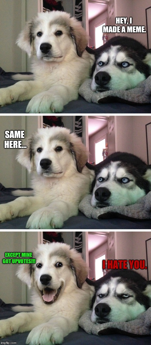 Bad pun dogs | HEY, I MADE A MEME. SAME HERE... EXCEPT MINE GOT UPVOTES!!! I HATE YOU. | image tagged in bad pun dogs | made w/ Imgflip meme maker