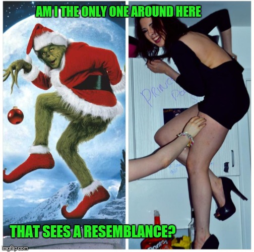 How The Grinch Stole Christmas Week Dec 9th - Dec 14th (A 44colt event) | AM I THE ONLY ONE AROUND HERE THAT SEES A RESEMBLANCE? | image tagged in memes,funny,the grinch,how the grinch stole christmas week,lookalike,44colt | made w/ Imgflip meme maker