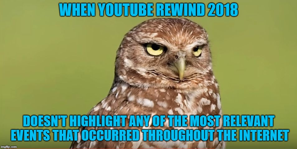 YouTube Rewind 2018: The Worst Atrocity To Hit The Internet |  WHEN YOUTUBE REWIND 2018; DOESN'T HIGHLIGHT ANY OF THE MOST RELEVANT EVENTS THAT OCCURRED THROUGHOUT THE INTERNET | image tagged in death stare owl,memes,funny,doctordoomsday180,youtube,youtube rewind | made w/ Imgflip meme maker