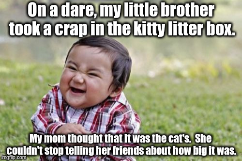 Evil Toddler Meme | On a dare, my little brother took a crap in the kitty litter box. My mom thought that it was the cat's.  She couldn't stop telling her frien | image tagged in memes,evil toddler | made w/ Imgflip meme maker