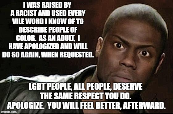 Kevin Hart | I WAS RAISED BY A RACIST AND USED EVERY VILE WORD I KNOW OF TO DESCRIBE PEOPLE OF COLOR.  AS AN ADULT,  I HAVE APOLOGIZED AND WILL DO SO AGA | image tagged in memes,kevin hart | made w/ Imgflip meme maker