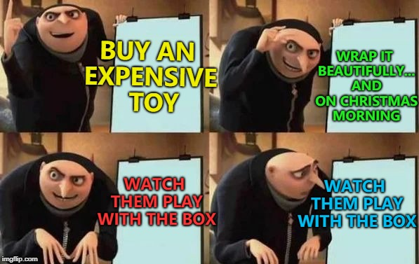 Or just give them bubble wrap... :) | BUY AN EXPENSIVE  TOY WRAP IT BEAUTIFULLY... AND ON CHRISTMAS MORNING WATCH THEM PLAY WITH THE BOX WATCH THEM PLAY WITH THE BOX | image tagged in gru's plan,memes,christmas,toys | made w/ Imgflip meme maker