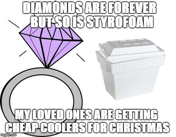 Forever Yours | DIAMONDS ARE FOREVER  BUT SO IS STYROFOAM MY LOVED ONES ARE GETTING CHEAP COOLERS FOR CHRISTMAS | image tagged in christmas,neil diamond,funny | made w/ Imgflip meme maker