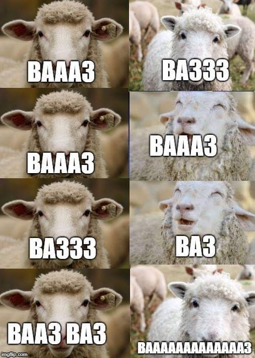 Close your eyes BROOO V.sheep | image tagged in close you eyes bro,sheep | made w/ Imgflip meme maker